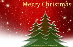 Merry Christmas - trees