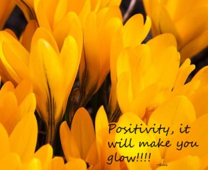 positivity crocus
